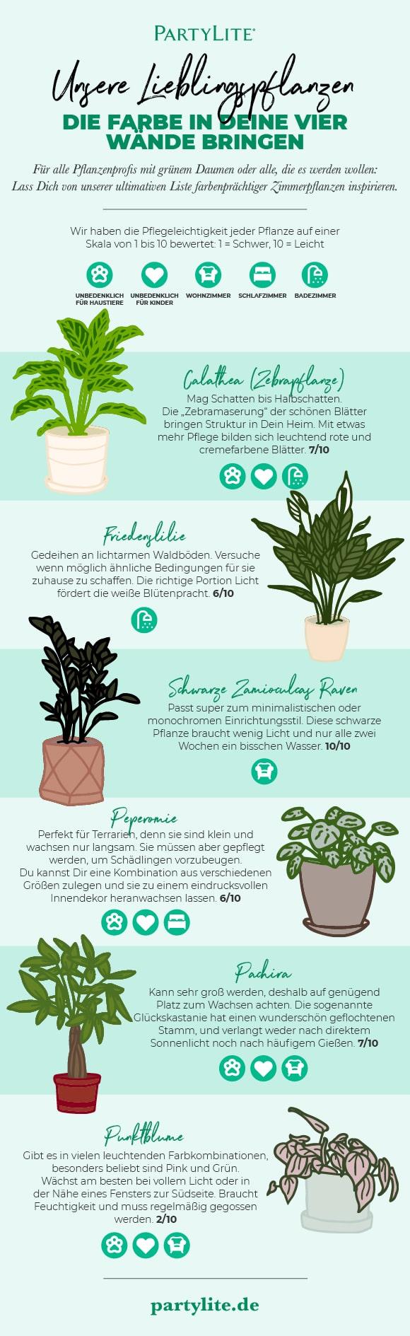 Unsere Lieblingspflanzen, die Farbe in Deine vier Wände bringen