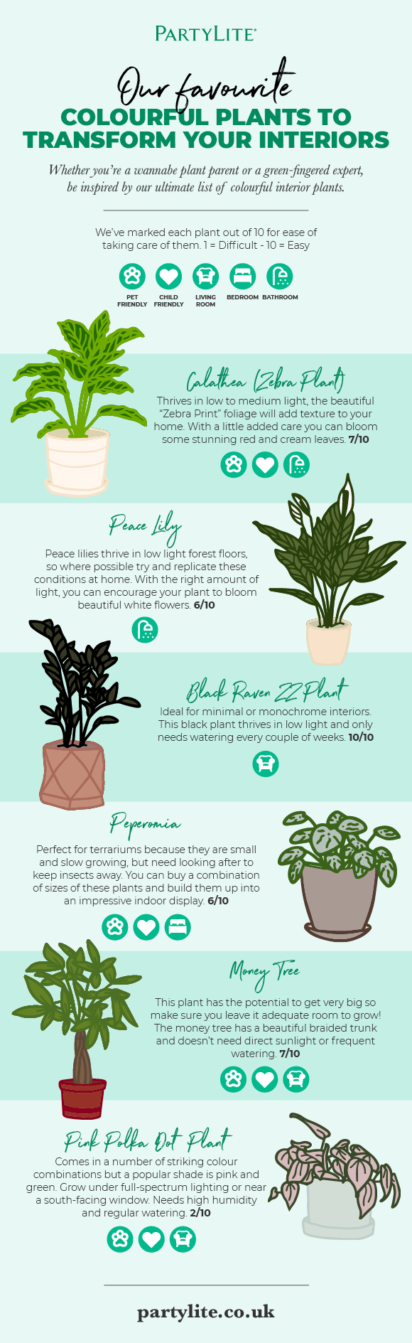 Colourful Plants to Transform Your Interiors Infographic by PartyLite